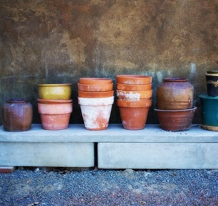 Urtepotter i terracotta
