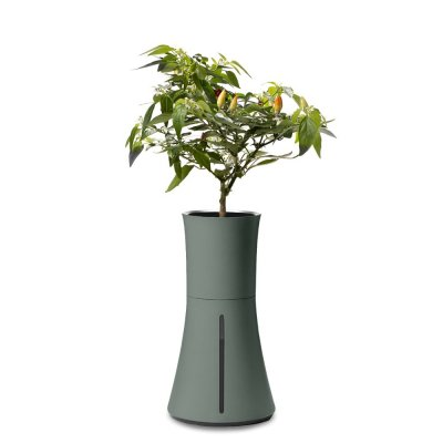 Botanium Självvattnande Kruka Grön