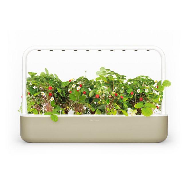 Click and Grow Smart Garden 9 Starter kit Beige