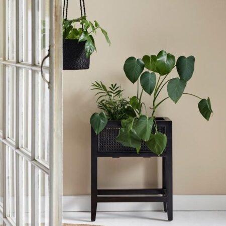 Plantestativ i teaktræ fra Nordal - H55 cm - sort